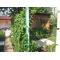 Сдам  домик в Новофедоровке под Саками,    Западный Крым